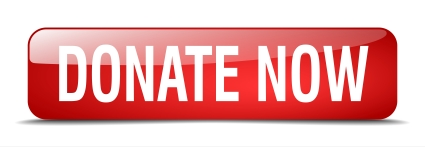 Donate Now 1